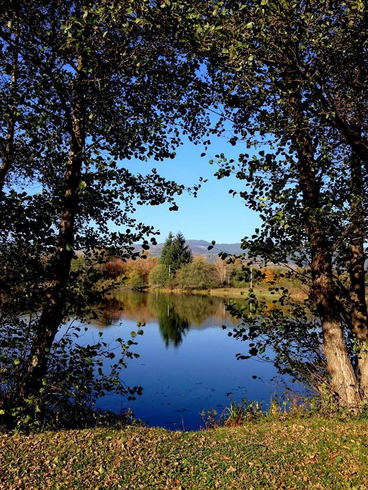 Лебедовите езера