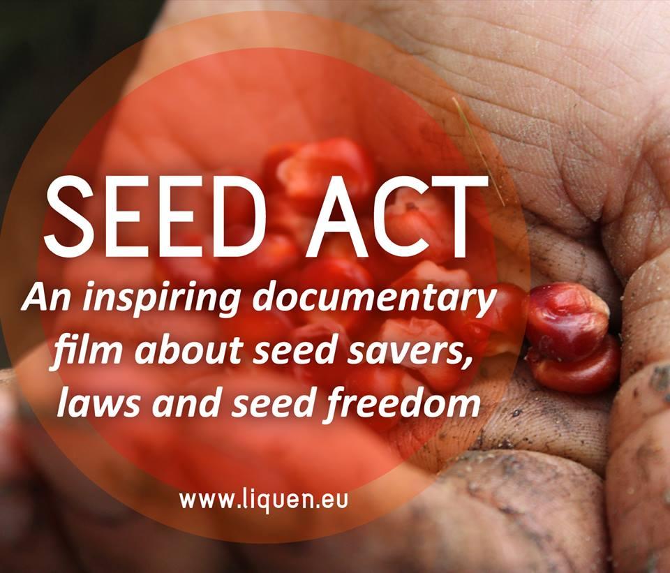 CEED ACT Movie Image
