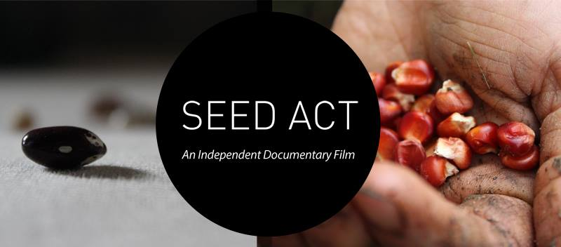 Ceed Act Documentary Movie Image